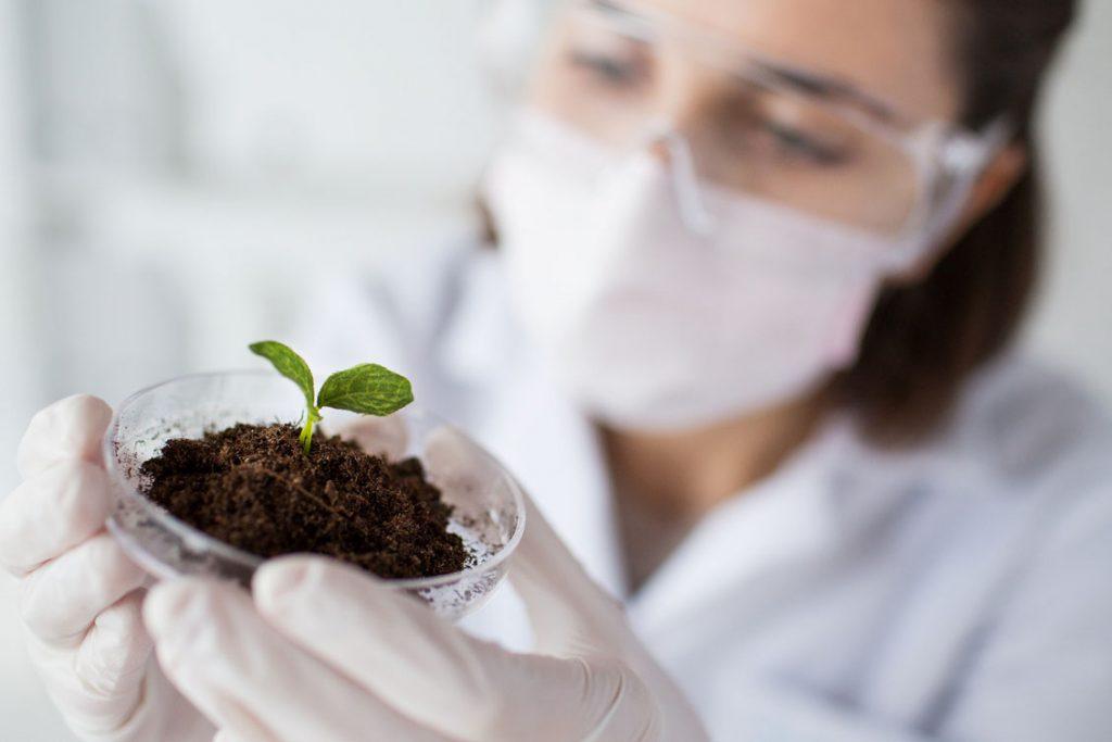 prodotti cosmetici da agricoltura sostenibile